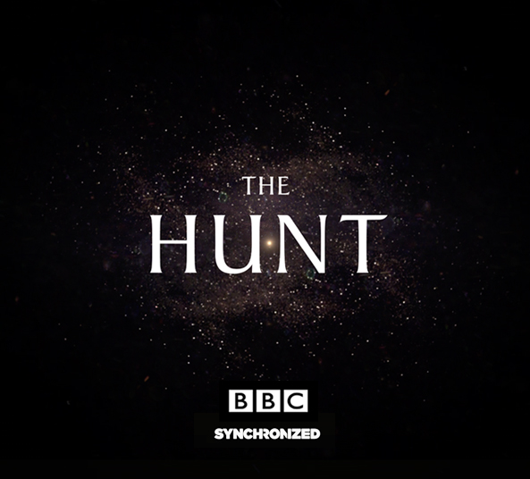 app-the-hunt-synchronized